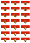 Salzburg Flag Stickers - 21 per sheet